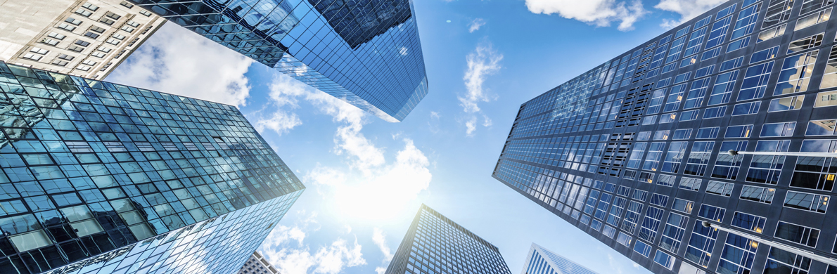 [Divider] [Management report] Blue sky and buildings